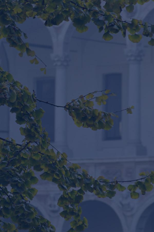 Università degli Studi di Milano - Photo by Vaclav Sedy